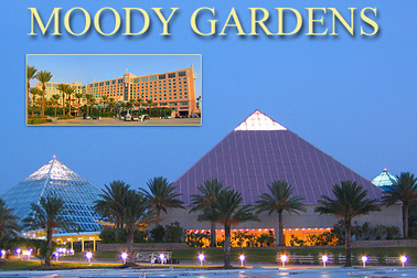 Moody Gardens Hotel Reservations - Priests of the ...